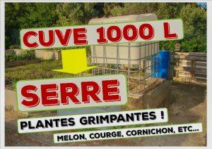 cuve 1000 litres transformée en serre cucurbitacée - association la jarre écocitoyenne - dzprod jardin