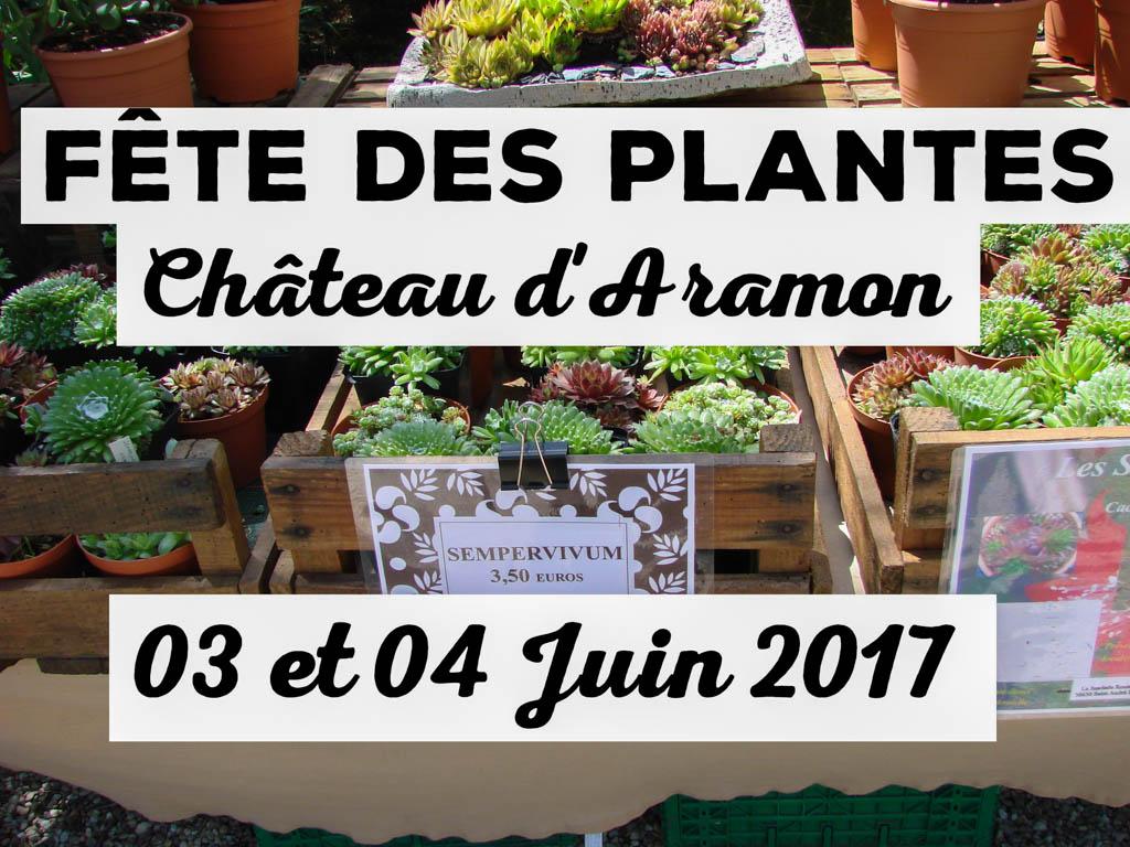 Fête des plantes à Aramon - 04 juin 2017