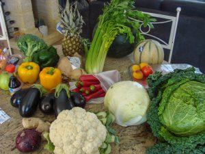 Légumes du jardin et achetés en vue des ateliers lactofermentation - association la jerre écocitoyenne