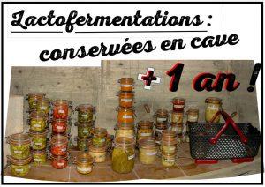 Lactofermentations conservées en cave du Loucascarelet - association la jarre écocitoyenne