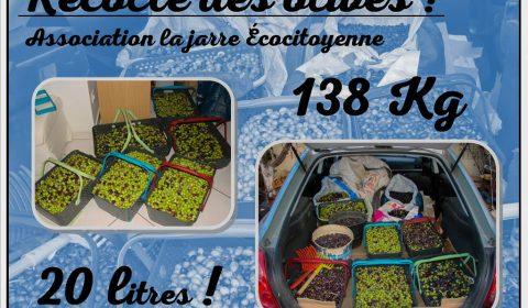 Bilan récolte des olives 2017 - 138kg - 20 litres - association la jarre écocitoyenne