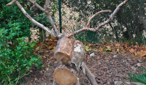 La collection automne-hiver de cerfs de Noël par IsabelleA - 02 - association la JARRE Écocitoyenne - 08112017