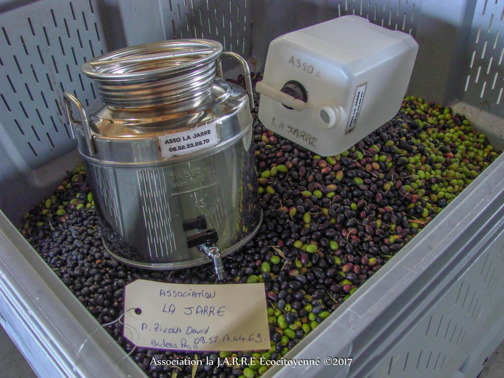 Palox huilier et les 109 kg olive - association la JARRE Écocitoyenne - 06-11-2017