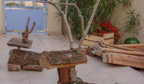 Renne du Père Noël assis - la mère femelle - Association la JARRE Écocitoyenne