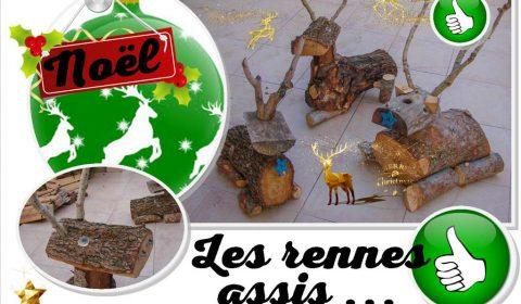 Rennes du Père Noël - assis en attente du traineau - Association la JARRE
