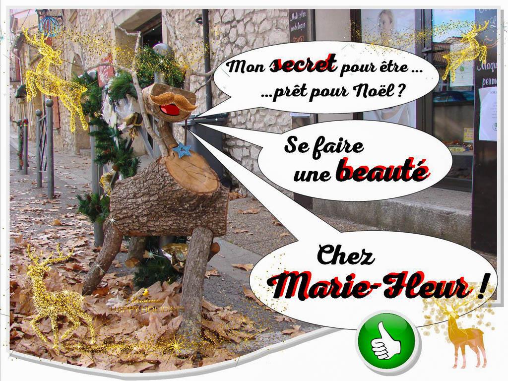 Le secret de beauté du renne de noël chez Marie-fleur à Rochefort du Gard - Association la Jarre écocitoyenne