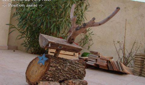 Renne du Père Noël assis - le fils - Association la JARRE Écocitoyenne