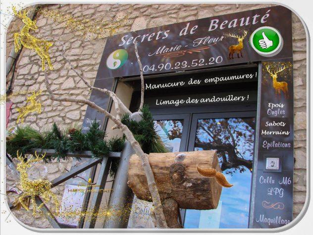 Se faire beau pour noël - les rennes foncent tous chez Marie-fleur - institut de beauté à Rochefort du Gard
