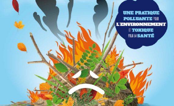 brûler ses déchets verts est interdit - association la JARRE Écocitoyenne