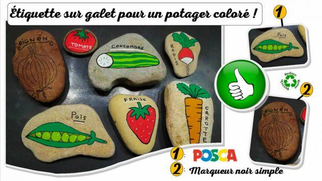 Il existe une multitude de façon de confectionner des étiquettes pour nommer les fruits et légumes Bio au jardin potager. La meilleure reste de simples galets et le nom inscrit avec un marqueur indélébile !