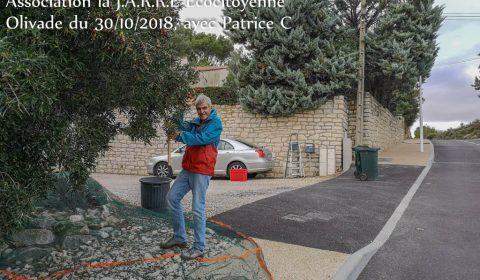 Récolte-des-olives-la-JARRE-Patrice-et-le-filet