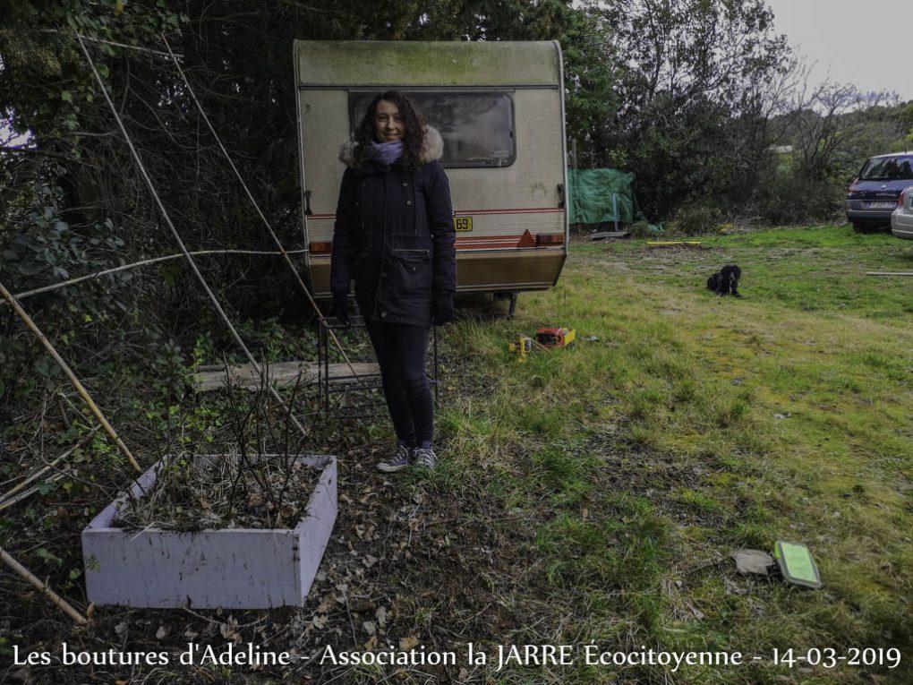 Bouture Adeline - Framboisier Cassissier Groseillier - Jardin communautaire des Amariniers - 14-03-2019