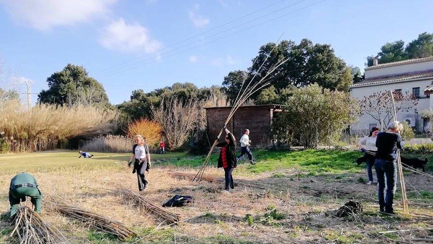 Image article Florence Lemaire article midi libre mars 2019 jardin Amariniers
