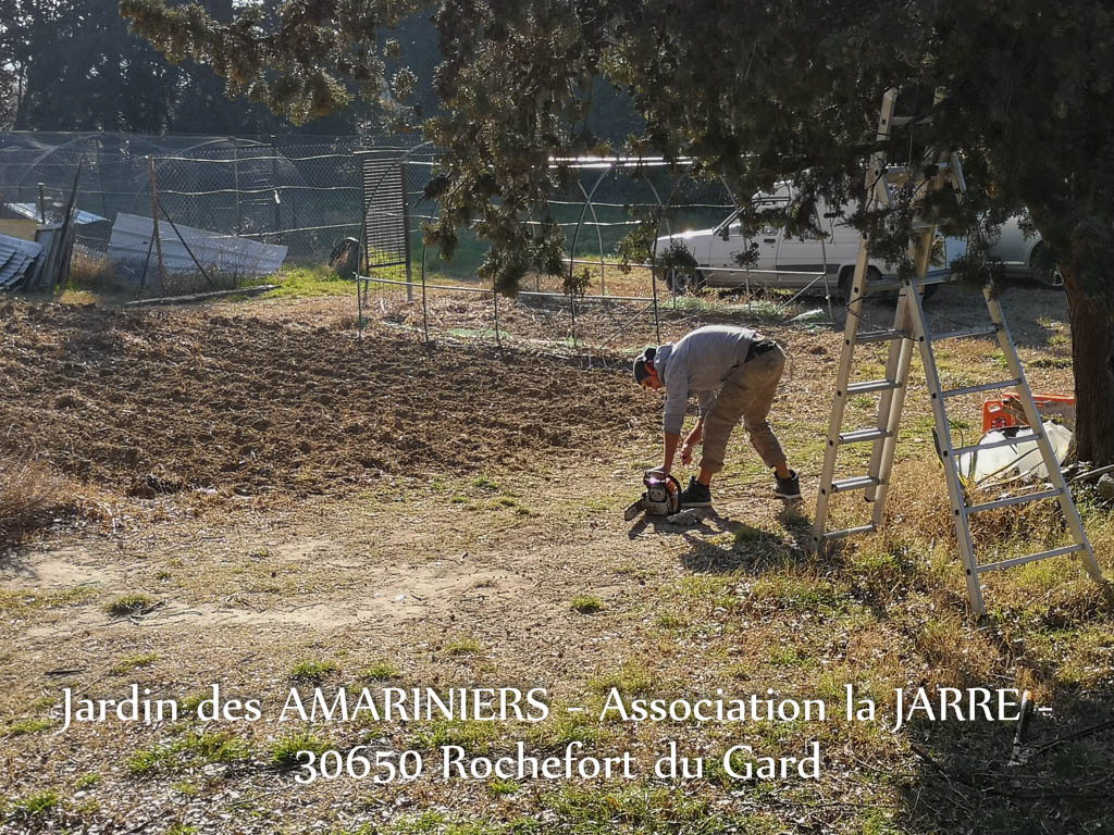 Mathieu Pasquier - Jardin communautaire des Amariniers - association la Jarre