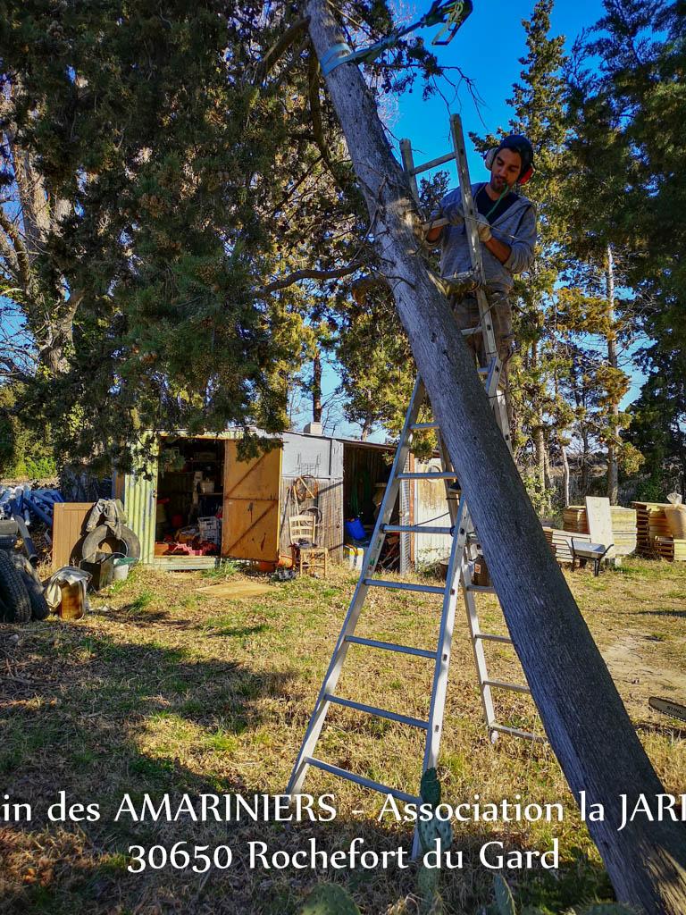 Matt se prépare à l'abattage - Jardin communautaire des Amariniers - association la Jarre