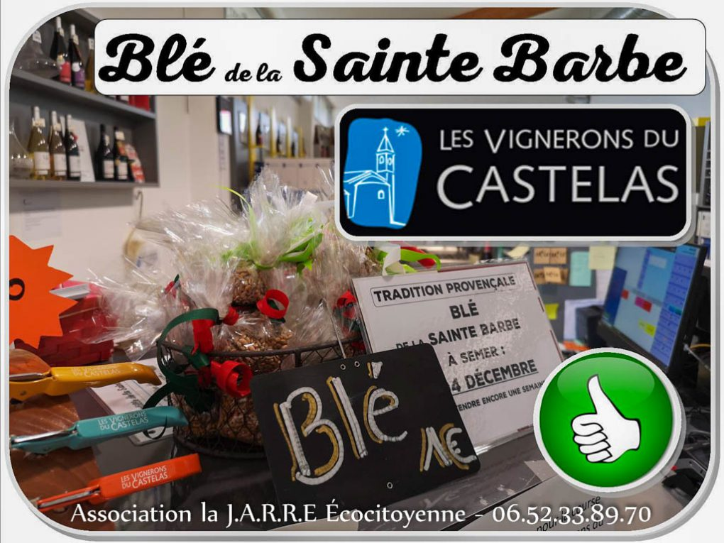 Cave Castelas - Blé sainte barbe - Rochefort du Gard