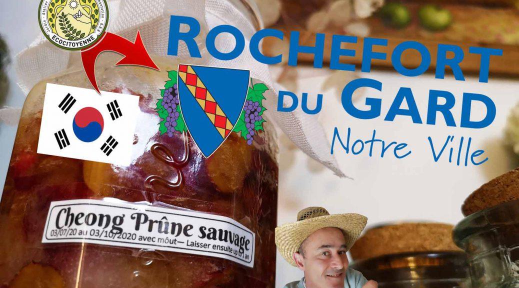 Prune sauvage rochefort du Gard -recette