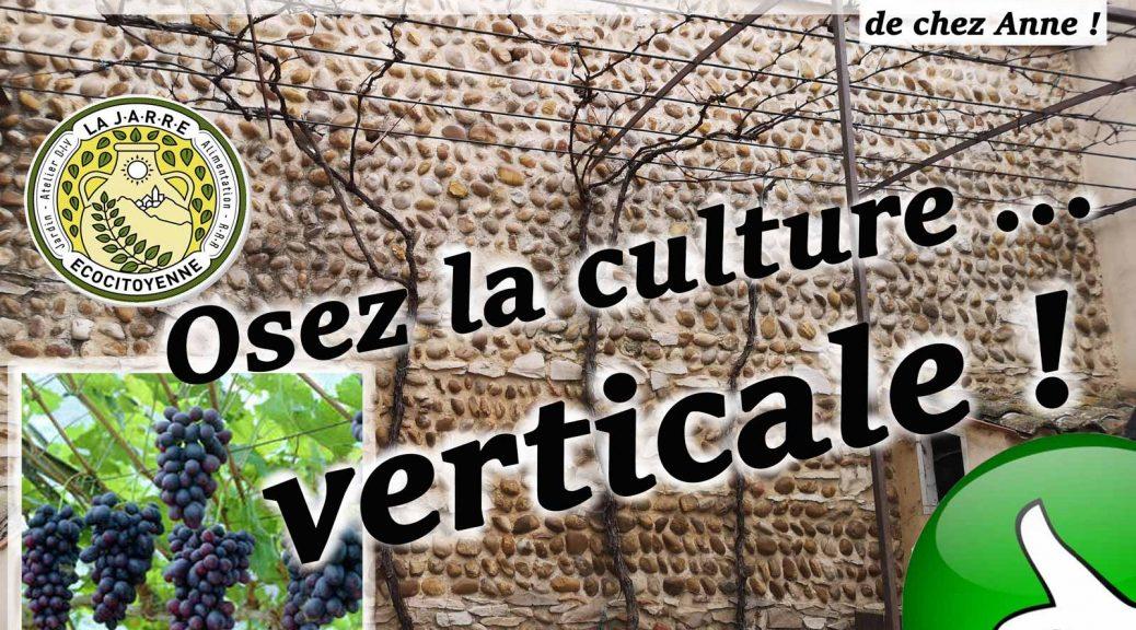 Osez la culture verticale sur treille
